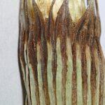 Equisetum ramossisimum 0012
