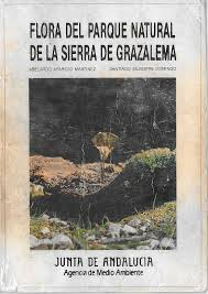 Flora Grazalema
