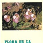 Flora de la tundra de Sierra Nevada