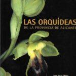 Las orquideas de la provincia de Albacete