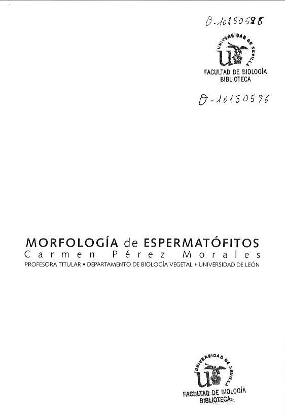 Morfologia de espermatofitos