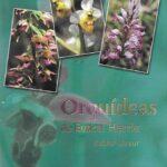 Orquideas de euskal herria