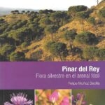 Pinar del Rey. Flores Silvestres en el arenal fósil