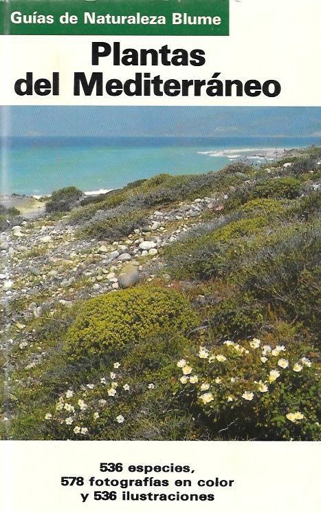 Plantas del Mediterraneo