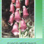 Plantas medicinales en extremadura