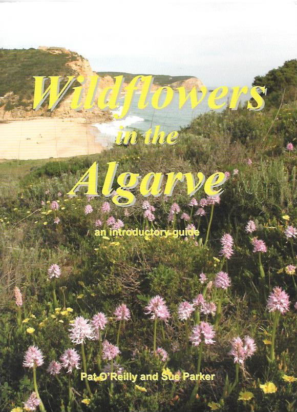 Wildflowers in the algarve