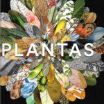 Plantas. Una exploracion del mundo botanico